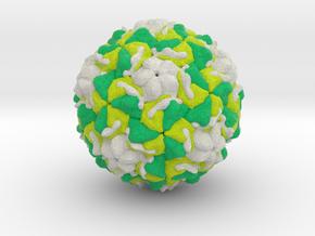 Rhinovirus Serotype 2 in Full Color Sandstone