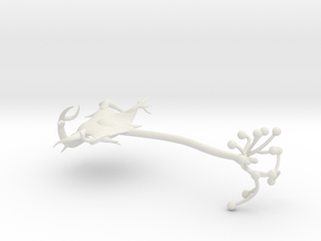 neuron cell model in White Natural Versatile Plastic
