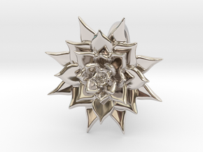 Pointed Succulent  in Rhodium Plated Brass