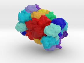 20S Proteasome in Full Color Sandstone