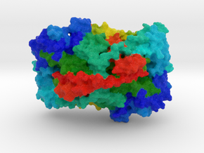 Vascular Cell Adhesion Protein  in Full Color Sandstone