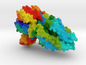 Dengue Virus Envelope Glycoprotein in Full Color Sandstone
