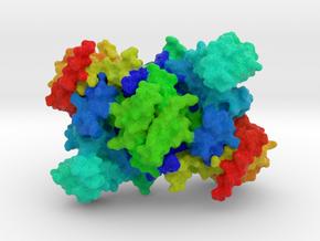 Lysyl-tRNA Synthetase in Full Color Sandstone