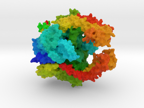 Topoisomerase IIα in Full Color Sandstone