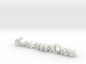 3dWordFlip: CaramelDrop/DostlukHarmony in White Natural Versatile Plastic