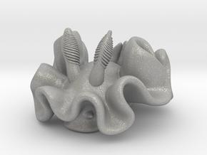 ardeadoris-cruenta in Aluminum: Small