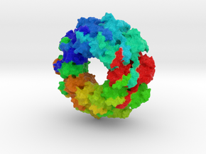 Stomatitis Virus Nucleocapsid in Full Color Sandstone