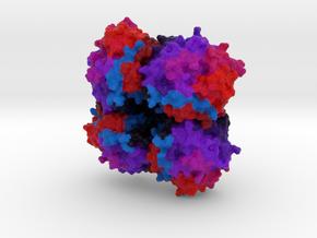 N4 Neuraminidase in Full Color Sandstone