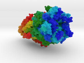 Nicotinic Acetylcholine Receptor  in Full Color Sandstone
