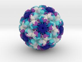 BK Polyomavirus in Full Color Sandstone