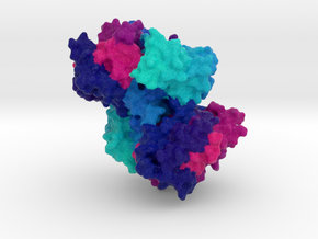 Choline Kinase in Full Color Sandstone