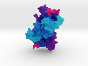Mitogen-Activated Protein Kinase Kinase 1 (MEK1) in Full Color Sandstone