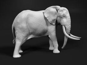 African Bush Elephant 1:64 Tusker Bull Dzombo in Smooth Fine Detail Plastic