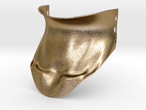 Collar Brace in Polished Gold Steel