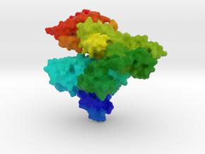 Human Serum Albumin in Full Color Sandstone