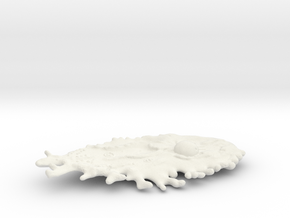 Omni Scale Monster Small Space Amoeba MGL in White Natural Versatile Plastic