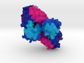 Haloacid Dehalogenase in Full Color Sandstone