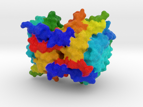 Caspase-6 Zymogen in Full Color Sandstone