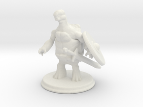 Tortle Barbarian in White Natural Versatile Plastic