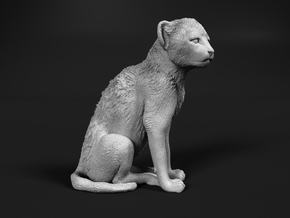 Cheetah 1:12 Sitting Cub in White Natural Versatile Plastic