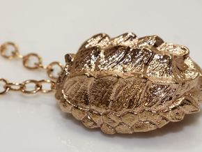 Alligator Snapping Turtle Shell in Polished Brass