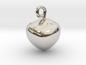 Hazelnut jewel in Rhodium Plated Brass
