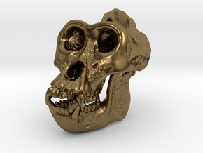 Gorilla Skull in Natural Bronze