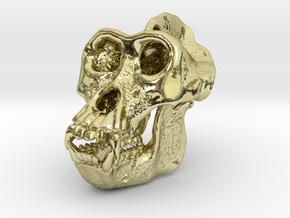 Gorilla Skull in 18k Gold Plated Brass