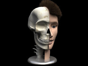 "Human Skull Head - 4"" tall in White Strong & Flexible"
