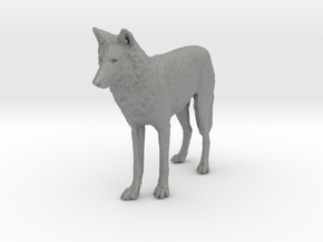 North American Gray Wolf - 1:72 in Gray Professional Plastic
