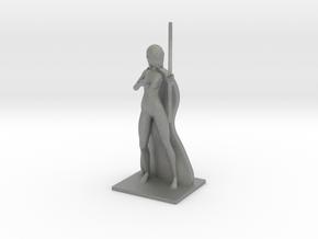 Aelfwynn in Gray Professional Plastic