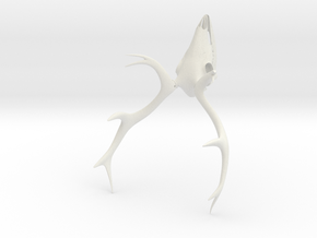 Deer Skull 3D Printed Model in White Natural Versatile Plastic