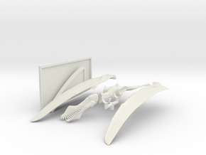Ahanguera Santanae 1:16th Scale With Stand in White Natural Versatile Plastic