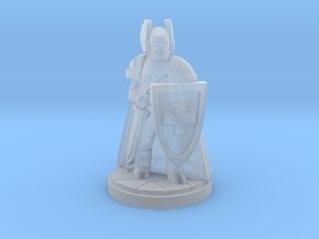 Order of the Red Cross Paladin Cleric in Smooth Fine Detail Plastic