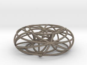 toroidal geodesics big in Matte Bronzed-Silver Steel
