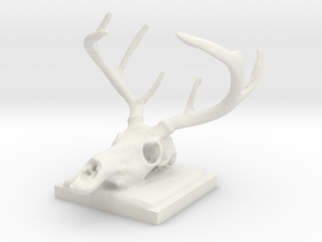 Colby's Deer in White Natural Versatile Plastic: Small