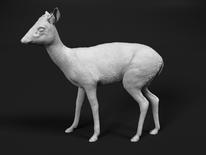 Kirk's Dik-Dik 1:76 Standing Male in Smooth Fine Detail Plastic