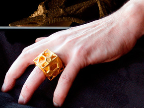 Cosmographicum Fractalium - The Ring in Polished Gold Steel