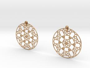 LSS Earrings in Polished Bronze