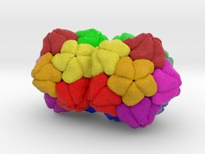 Plant Geminivirus in Natural Full Color Sandstone