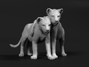Lion 1:72 Cubs distracted while playing in Smooth Fine Detail Plastic