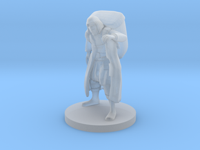 Mysterious Merchant in Smooth Fine Detail Plastic