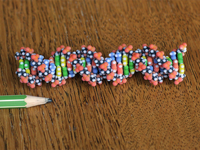 DNA Molecule. in Full Color Sandstone: Small