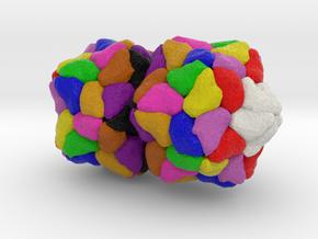 Ageratum Yellow Vein Virus in Natural Full Color Sandstone