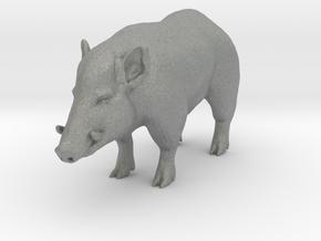 O Scale Wild Boar in Gray PA12