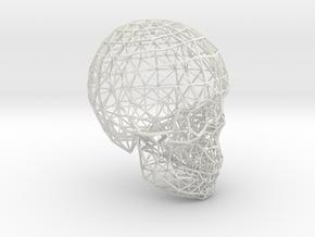 skull lattice model in White Natural Versatile Plastic