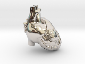 very tiny detail heart in Rhodium Plated Brass