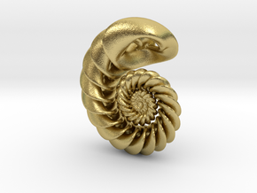 Nautilus Pendant in Natural Brass: Small