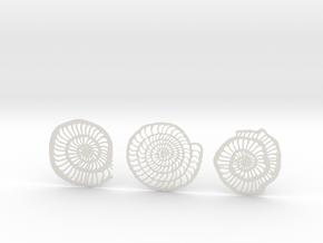 Foraminifera Coasters in White Natural Versatile Plastic
