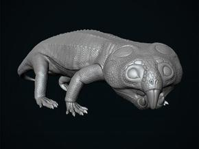 Hyperodapedon (Scaphonyx) Jr. 1/12 in White Strong & Flexible